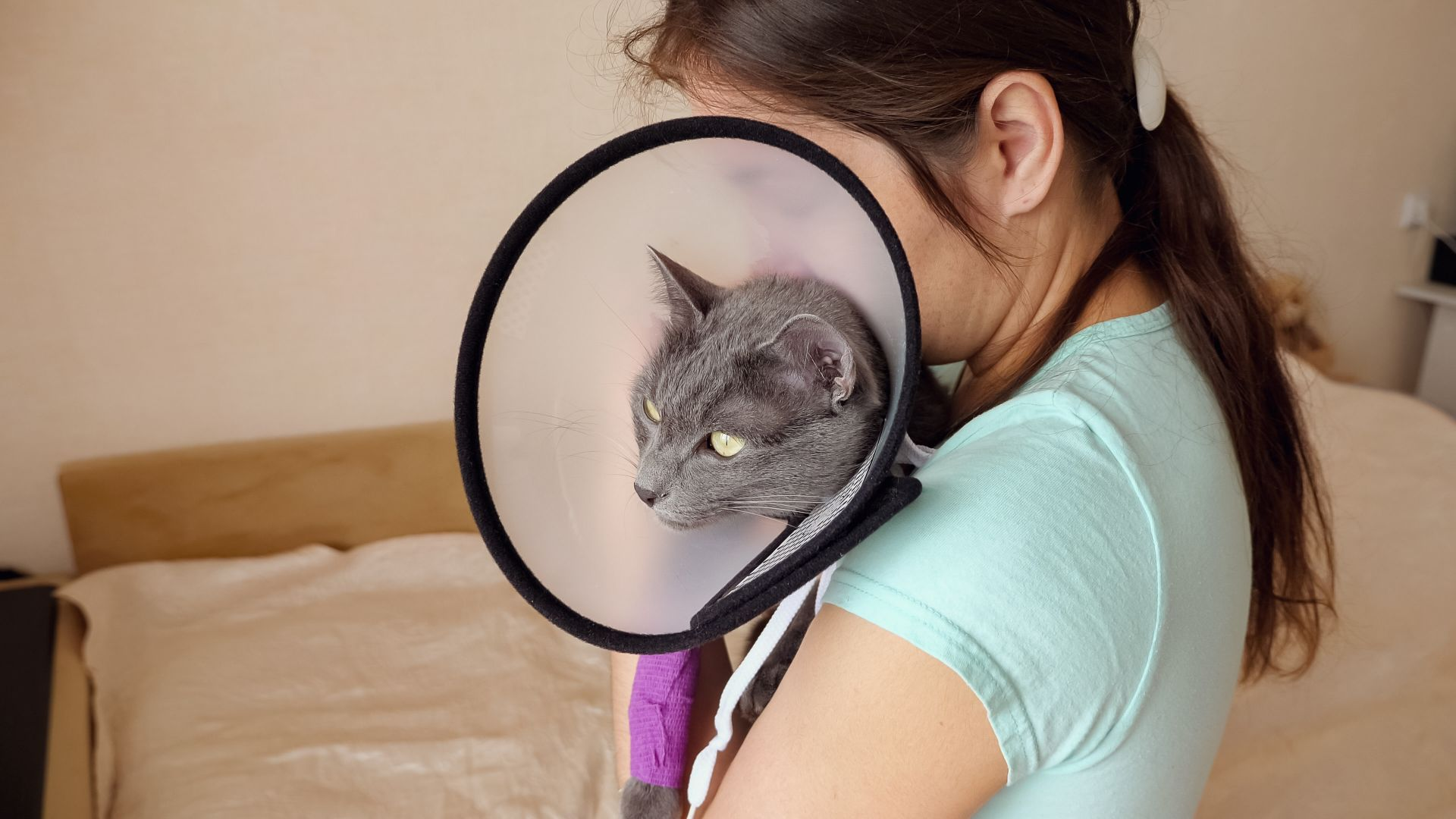 A woman holds a cat in a cone of shame.